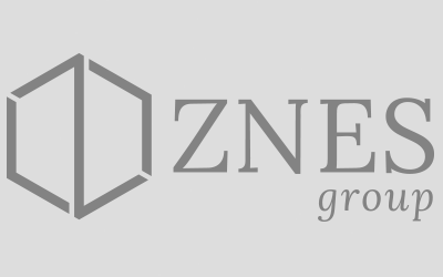 ZNES Group